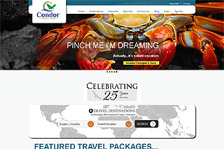 Website and Content Management System for Travel Agency in Lawrenceville, GA